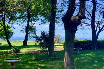 Daffodils by the Sea: A Historic Estate
